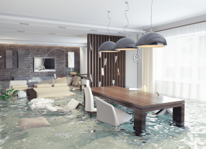 Water Damage Public Adjuster